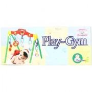 DDH Play Gym