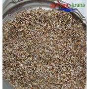 Semenje lucerke (deteline)
