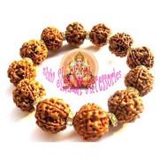 5 Mukhi Rudraksha /Five Face Rudraksh Bracelet 16-18 MM Nepal Bead Energized