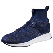 Puma Ignite EvoKnit blue