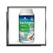 Bactogen 12000