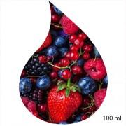 Ulei de parfum de fructe de pădure 100ml