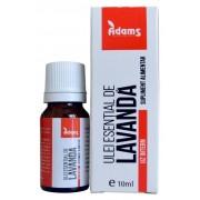 Ulei Esential de Lavanda pentru Uz Intern 10ml
