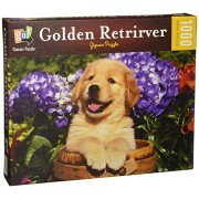 GO Classic Puzzles PUPPY Golden Retriever in Water Bucket 1000 Piece Jigsaw Puzzle