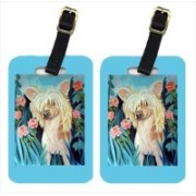Caroline's Treasures 7087BT Chinese Crested Luggage Tags Luggage Tag(Multicolor)