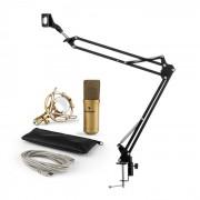 MIC-900G Set Microfono USB V3 Microfono A Condensatore + Braccio Microfono Cardioide Oro