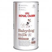4 kg (10 db 400g-os zacskó) Royal Canin Babydog milk