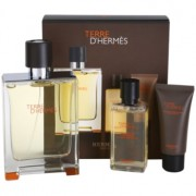 Hermès Terre d'Hermès lote de regalo I. eau de toilette 100 ml + gel de ducha 40 ml + bálsamo after shave 15 ml