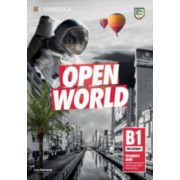 Open World Preliminary Teachers Book with Downloadable Resource Pack par Darrond & Lisa