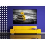 Tablou canvas pietre zen - cod A31