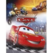 Deltas Leesboekje Disney Cars
