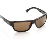 Polaroid Rectangular Sunglasses(Brown)