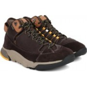 Clarks Tri OutflexGTX Brown Leather Boots For Men(Brown)