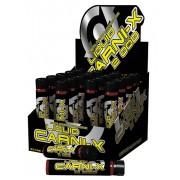 Carni X Liquid 2000