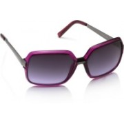 Equal Over-sized Sunglasses(Violet, Grey)