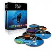 Magia Wielkiego Błękitu - 7 DVD