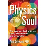 Physics of the Soul: The Quantum Book of Living, Dying, Reincarnation, and Immortality, Paperback
