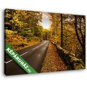 Erdei út ősszel (40x25 cm, Vászonkép )