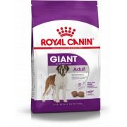 Feed Royal Canin SHN Giant Adult (15 kg)