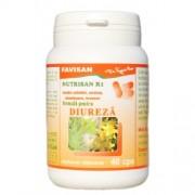 Nutrisan R1 40cps Favisan