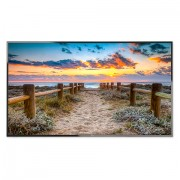 NEC MultiSync E556 55' E-Series large format display, 350cd/m2, Direct LED backlight, 12/7 proof, Media Player