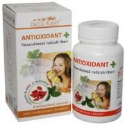 Antioxidant + - Pentru neutralizarea radicalilor liberi