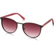 Fastrack Oval Sunglasses(Pink)