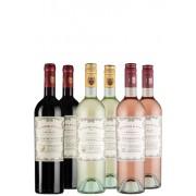 6er Doppio Passo-Paket - Weinpakete