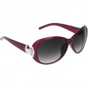 Zyaden Violet Round sunglasses for women 419