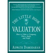 The Little Book of Valuation: How to Value a Company, Pick a Stock, and Profit, Hardcover