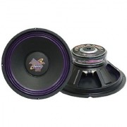 Pyramid WH1038 10-Inch 300 Watt High Power Paper Cone 8 Ohm Subwoofer