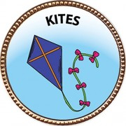 "Keepsake Awards Kites Gold Award Pin ""Creative Arts and Hobbies Collection"" 1 inch dia"