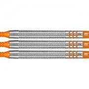 Target Softdart Sets - Raymond van Barneveld RVB80 80% 16g soft