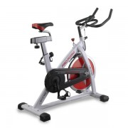 ProForm Bicicleta de biking PROFORM SPEED BIKING 200