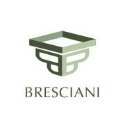 Alcool metilic Bresciani