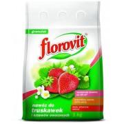 Florovit ingrasamant specializat granulat pentru capsuni, fructe de padure si fragi 1kg