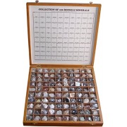 Rocksmins Collection of 100 Rocks & Minerals for Education in Woodne Box