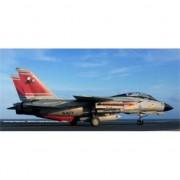 Macheta aeromodele Revell Grumman F-14D Super Tomcat 1:72 REV 03960