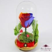 """Rainbow"" Trandafir criogenat multicolor in cupola"