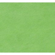 Linkstar Fleece Cloth FD-109 3x6m Chroma Green zelena transparentna studijska pozadina od sintetike Non-washable 5668509