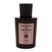 Acqua di Parma Colonia Leather acqua di colonia 100 ml uomo