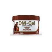 Anti-inflamatório Vetnil Dm-gel 300 G