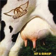 Video Delta Aerosmith - Get A Grip - Vinile