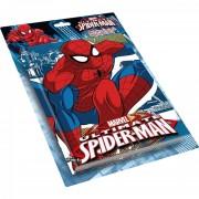 Mv15308 spider-man led diary 809
