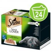 24x85 гр вариации Sheba, консервирана храна за котки, Sauce Speciale