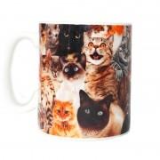 Merkloos Gek van katten cadeau koffiemok
