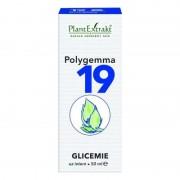Polygemma nr. 19 Glicemie