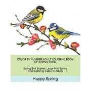 Color by Number Adult Coloring Book of Spring Birds: Spring Bird Scenes, Large Print Spring Birds Coloring Book for Adults, Paperback/Happy Spring