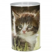 Geen Kittens spaarpot 15 cm type 2 - Action products