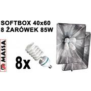 ZESTAW L4642: 2x softbox 40x60cm , 2x statyw 230cm, 8x żarówka 85W